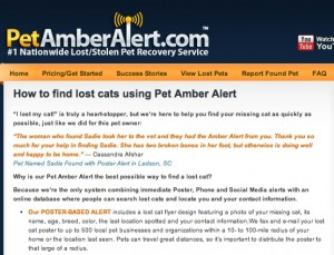 PetCopywriter.com provides web-SEO copywriting to PetAmberAlert.com