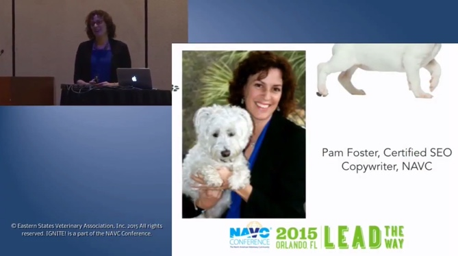 Pam speaking on veterinary marketing at the NAVC. Click to watch the presentation.