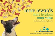 PetCopywriter.com owner Pam Foster wrote this veterinary direct mail campaign