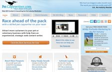PetCopywriter.com was redesigned to make sure its pet marketing solutions could be seen quickly at a glance
