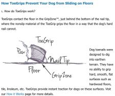 PetCopywriter.com blog post photo of ToeGrips.com FAQ page