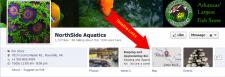 PetCopywriter photo Facebook timeline example