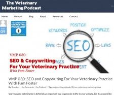 Tune in to The Veterinary Marketing Podcast to hear SEO tips for your practice