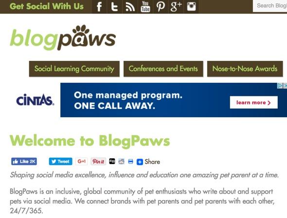 veterinary blog | PetCopywriter com